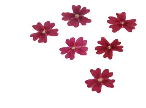 Red edible dried Verbena blossoms